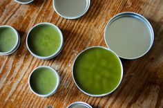 makea soothing chickweedsalve for all the stings, bites, and itchy little skin irritations