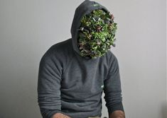 nike air max 30 40 avis - J��r��my MARTIN - LES EPHEMERES C'est un fleuriste qui exploite les ...