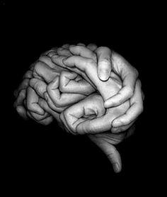 brainy  Great!