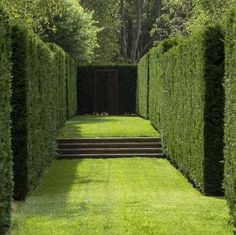 Peter Fudge creates gardens that connect in deep and meaningful ways. Peter has been designing beautiful gardens since Every garden design has… Garden Hedges, Garden Landscaping, Formal Gardens, Outdoor Gardens, Landscape Architecture, Landscape Design, Formal Garden Design, Home And Garden Store, Parcs
