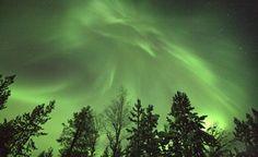 Nellim, northern lights, Muotka Northern lights, muotka maja nothern lights,