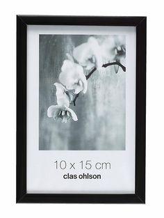 fotoramar som passar mina insektsskoltavlor (som är 19x27cm)