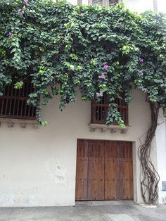 portones de cartagena doors