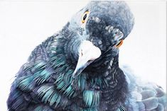 Adele Renault New Oil Pigeon Painting Exhibition at Havas ANNEX Chicago