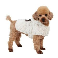 Artic Dog Coat with Luxurious Faux Fur for a Super Soft Coat & Hood - Stylish Design with Pearl Belt & Ribbon Bow - Ivory, Pink or Black #dogcoat #fashionstyle
