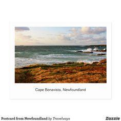 Postcard from Newfoundland