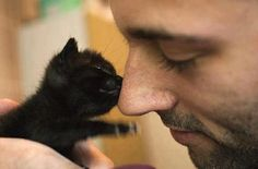 Real men let tiny kittens boop their noses...