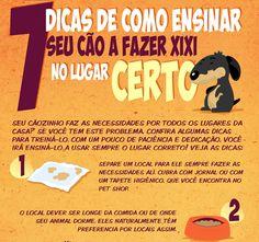 Xixi no lugar errado? Acompanhe nossas dicas desta semana! www.petmeupet.com.br