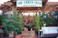 Urban Seed, Just a beautiful store in Old Town, San Diego (near the airport). Worth the visit!