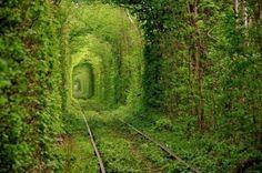 Platz 9: Tunnel of Love, Ukraine. Das kleine Örtchen Klevan mag nicht sonderlich bekannt sein, doch unter Verliebten gilt es als Geheimtipp: Mitten im Wald laufen Eisenbahnschienen entlang, die zu einer Holzfabrik führen. Die Bäume bilden einen Korridor, durch den nur drei Mal am Tag ein alter Zug durchfährt. Den Rest der Zeit tummeln sich Verliebte auf den Gleisen.  Jedes Pärchen, dass den Tunnel der Liebe besucht, darf sich etwas wünschen, was der Legende nach wahr werden wird.