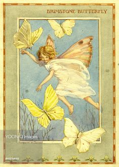 'Brimstone Butterfly' - Illustration from the book 'The Insect Fairies' . Margaret Tarrant