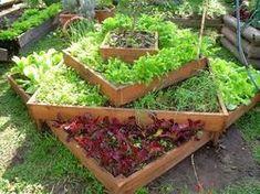 Mantillo de Bosque - Realización de Paques y Jardines - Lombricultura - Sustratos