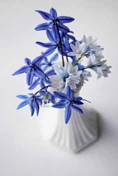blue and white flowers in milk glass vase Milk Glass Vase, Milk Cans, Color Stories, Container Plants, Some Pictures, Color Combos, White Flowers, Bugs, Bouquets