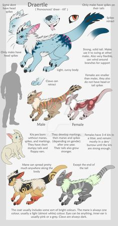 Open species (you can make your own) but you MUST credit the species to me. Species info: Habitat: usually anywhere near water Diet: Small mammals and fish Colours dont have to be as intense as the...