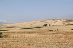 Route entre Ummari & Castelvetrano (Selinunte)