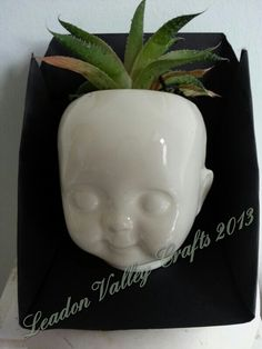 Ceramic dolls head planter. Www.Facebook.com / leadonvalley