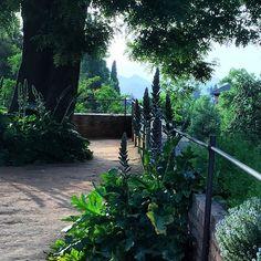 El Parador Hotel #Granada #Spain #Greenery #BreathtakingView