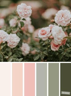 Pretty Spring Color Schemes { Blush Sage } & Fabmood & Wedding Colors, Wedding Themes, Wedding color palettes Source by marilenamatala Sage Color Palette, Color Schemes Colour Palettes, Spring Color Palette, Pastel Colour Palette, Spring Colors, Wedding Color Schemes, Pastel Colors, Wedding Colors, Color Palette For Wedding