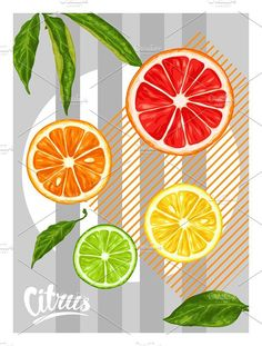 Poster with citrus fruits slices.. Creative Card Templates. $4.00