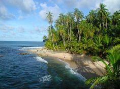 Visitar Costa Rica, y parte del escenario de 'Jurassic Park'