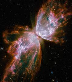Nebulosa Butterfly