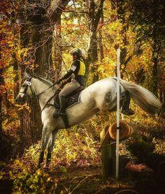 Sports Memorabilia Olympic Memorabilia Atlanta Summer Paralympics Rich In Poetic And Pictorial Splendor Paralympic Equestrian Pin