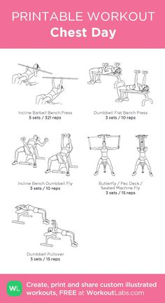 Biceps And Triceps My Visual Workout Created At Workoutlabs Com Click Through To Customize As A Free Pdf Customworkout Fitness Workouts, Planet Fitness Workout Plan, At Home Workouts, Body Workouts, Fitness Foods, Lifting Workouts, Swimming Workouts, Swimming Tips, Chest Workouts