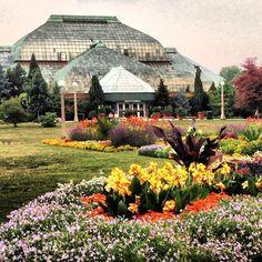 Pretty! Lincoln Park Conservatory in Chicago, IL