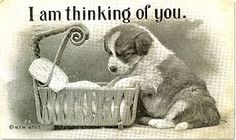 E-Cards with Puppies and Dogs