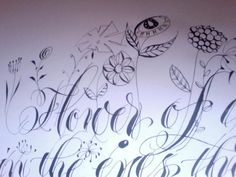 Calligrapher Barbara Calzolari uploaded this lovely floral piece this morning.