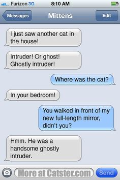 Texts From Mittens: The Supernatural Edition