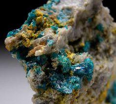 Caledonite with Perite from Reward Mine, near Independence, Inyo Co., California [db_pics/pics/na201c.jpg]