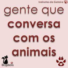 Gente que... Conversa com os animais
