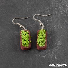 Boucles d'oreille vertige chocolat avec lichen - bijou créateur, bijoux fait main, bijoux créateur, bijou fait main, bijou femme, bijoux femme, bijou vegetal, bijou végétal, bijoux végétaux, bijoux vegetaux