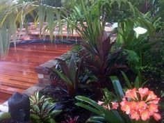 Balinese Garden Design Rozelle Inner West Sydney - Landscapers Sydney