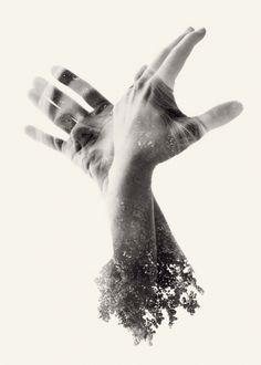 "Christoffer Relander ""We Are Nature"" series"