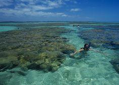 La mágica costa de coral en Brasil (Maragogi)