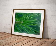 Pine Needles Wall Art Digital file Printable Art Home