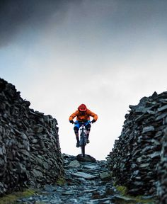 Trek Bikes - The world's best bikes and cycling gear   Trek Bikes