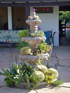 Cactus Fountain - Photo by Maureen Gilmore