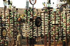 Picture: bottle trees at Elmer's Place, along Route 66 in Helendale, California.