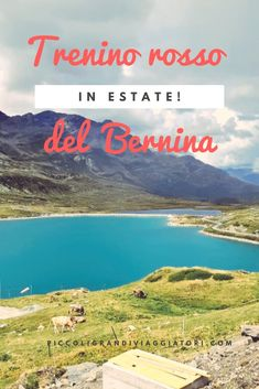 Bernina Express, Earth View, I Want To Travel, Trekking, What A Wonderful World, Where To Go, Trip Planning, Wonders Of The World, Family Travel