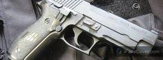 Sauer P226