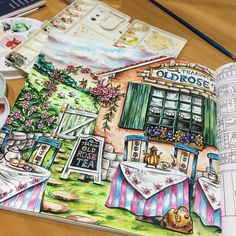 #livrosdecolorir #livrosdecolorirparaadultos #coloringbookforadult #coloringbook #watercolor