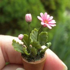 Beautiful Hot Pink Gerbera Daisy in Clay Pot Dollhouse Miniature Gerber Daisies | eBay