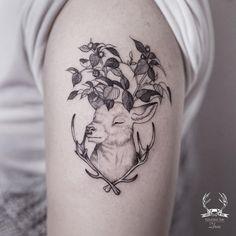 White Deer 🌿