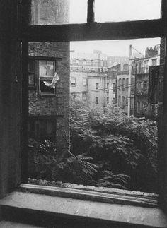 a view of the east village from the back of allen ginsburg's apartment.