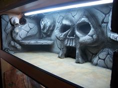 Cool skull snake cage