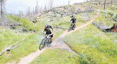 Colorado | Mountain Biking | The Denver Post | Trails | Buffalo Creek | 401 Trail | Doctor Park | Phil's Word | Beall Trail
