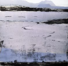 Oystercatcher Etching and monoprint Print | Stephen Robson | Buy Today!